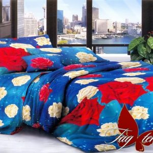 Комплект постельного белья B252-1  ТОВАРЫ СО СКИДКАМИ