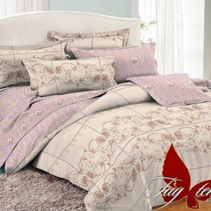 Комплект постельного белья с компаньоном PC056  ПОСТЕЛЬНОЕ БЕЛЬЕ ТМ TAG > 2-спальные > Поплин