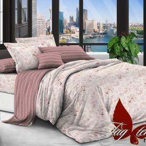 Комплект постельного белья с компаньоном PL001  ПОСТЕЛЬНОЕ БЕЛЬЕ ТМ TAG > Семейные > Поплин