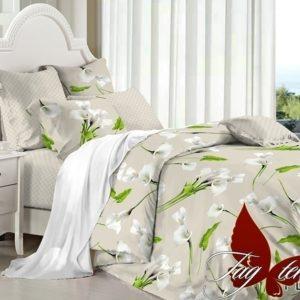 Комплект постельного белья с компаньоном PL5803  ПОСТЕЛЬНОЕ БЕЛЬЕ ТМ TAG > Семейные > Поплин