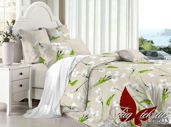 Комплект постельного белья с компаньоном PL5803  ПОСТЕЛЬНОЕ БЕЛЬЕ ТМ TAG > 2-спальные > Поплин
