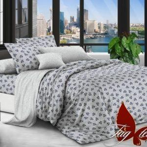 Комплект постельного белья с компаньоном PL5812  ПОСТЕЛЬНОЕ БЕЛЬЕ ТМ TAG > 2-спальные > Поплин
