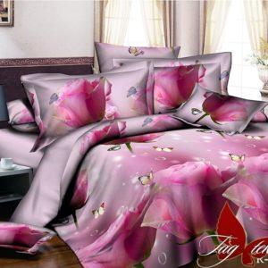 Комплект постельного белья R2025  ПОСТЕЛЬНОЕ БЕЛЬЕ ТМ TAG > 2-спальные > Ренфорс