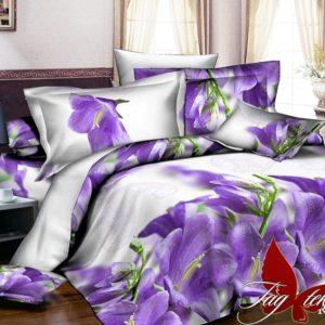 Комплект постельного белья R2033  ПОСТЕЛЬНОЕ БЕЛЬЕ ТМ TAG > 2-спальные > Ренфорс