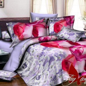 Комплект постельного белья R2036  ПОСТЕЛЬНОЕ БЕЛЬЕ ТМ TAG > 2-спальные > Ренфорс