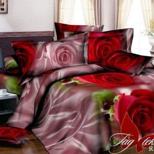 Комплект постельного белья R2038  ПОСТЕЛЬНОЕ БЕЛЬЕ ТМ TAG > 1.5-спальные > Ренфорс
