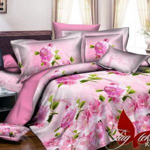 Комплект постельного белья R2039  ПОСТЕЛЬНОЕ БЕЛЬЕ ТМ TAG > 2-спальные > Ренфорс
