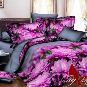 Комплект постельного белья R2041  ПОСТЕЛЬНОЕ БЕЛЬЕ ТМ TAG > 2-спальные > Ренфорс