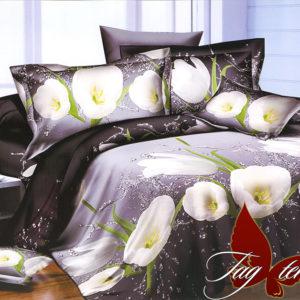 Комплект постельного белья R2095  ПОСТЕЛЬНОЕ БЕЛЬЕ ТМ TAG > Семейные > Ренфорс