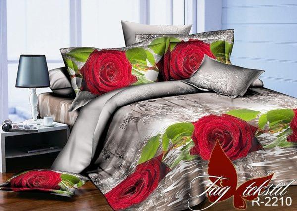 Комплект постельного белья R2210  ПОСТЕЛЬНОЕ БЕЛЬЕ ТМ TAG > 2-спальные > Ренфорс