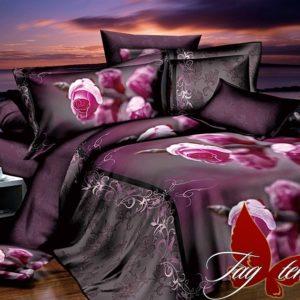 Комплект постельного белья R2266  ПОСТЕЛЬНОЕ БЕЛЬЕ ТМ TAG > 1.5-спальные > Ренфорс