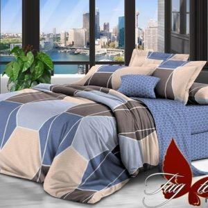 Комплект постельного белья с компаньоном R2989  ПОСТЕЛЬНОЕ БЕЛЬЕ ТМ TAG > 2-спальные > Ренфорс