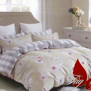 Комплект постельного белья с компаньоном R3003  ПОСТЕЛЬНОЕ БЕЛЬЕ ТМ TAG > 2-спальные > Ренфорс
