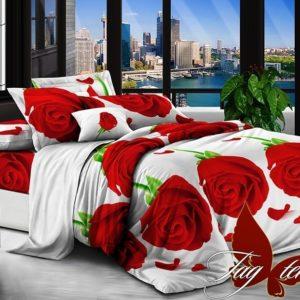 Комплект постельного белья R519  ПОСТЕЛЬНОЕ БЕЛЬЕ ТМ TAG > 2-спальные > Ренфорс