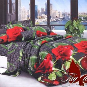 Комплект постельного белья R621  ПОСТЕЛЬНОЕ БЕЛЬЕ ТМ TAG > 1.5-спальные > Ренфорс