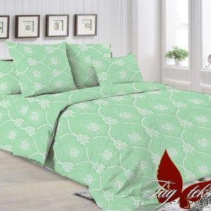 Комплект постельного белья R7005 green  ПОСТЕЛЬНОЕ БЕЛЬЕ ТМ TAG > 2-спальные > Ренфорс