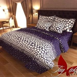 Комплект постельного белья с компаньоном R7413  ПОСТЕЛЬНОЕ БЕЛЬЕ ТМ TAG > 2-спальные > Ренфорс