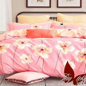 Комплект постельного белья с компаньоном R7414  ПОСТЕЛЬНОЕ БЕЛЬЕ ТМ TAG > 2-спальные > Ренфорс