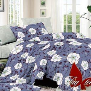 Комплект постельного белья с компаньоном S211  ПОСТЕЛЬНОЕ БЕЛЬЕ ТМ TAG > Евро > Сатин люкс ТМ TAG