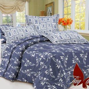 Комплект постельного белья с компаньоном S254  ПОСТЕЛЬНОЕ БЕЛЬЕ ТМ TAG > 2-спальные > Сатин люкс ТМ TAG