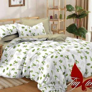 Комплект постельного белья с компаньоном S281  ПОСТЕЛЬНОЕ БЕЛЬЕ ТМ TAG > Семейные > Сатин люкс ТМ TAG