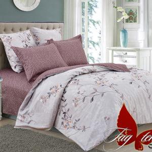 Комплект постельного белья с компаньоном S287  ПОСТЕЛЬНОЕ БЕЛЬЕ ТМ TAG > 1.5-спальные > Сатин люкс ТМ TAG