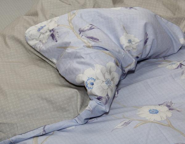 Комплект постельного белья с компаньоном S358 2 Постельный комплект