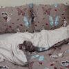 Комплект постельного белья с компаньоном S360 6 Постельный комплект