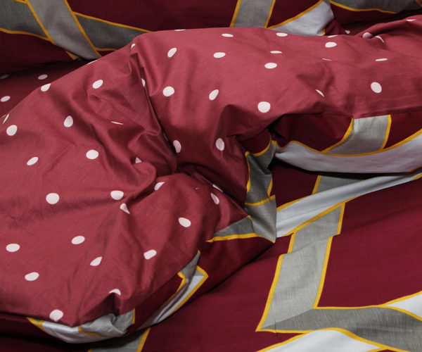 Комплект постельного белья с компаньоном S362 2 Постельный комплект