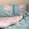 Комплект постельного белья с компаньоном S364 6 Постельный комплект