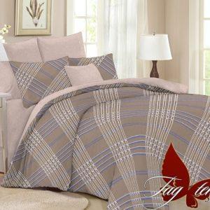 Комплект постельного белья с компаньоном SL323  ПОСТЕЛЬНОЕ БЕЛЬЕ ТМ TAG > Семейные > Поплин