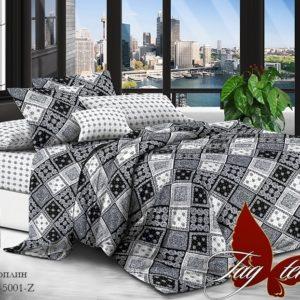 Комплект постельного белья с компаньоном TM-5001Z  ПОСТЕЛЬНОЕ БЕЛЬЕ ТМ TAG > 1.5-спальные > Поплин