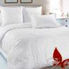 Комплект постельного белья White  ПОСТЕЛЬНОЕ БЕЛЬЕ ТМ TAG > Семейные > Страйп-сатин