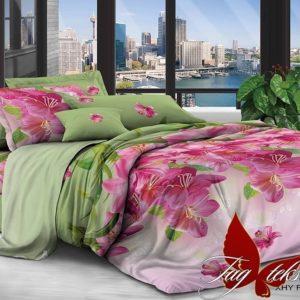 Комплект постельного белья XHY2537  ПОСТЕЛЬНОЕ БЕЛЬЕ ТМ TAG > Семейные > Поликоттон 3D
