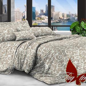Комплект постельного белья XHY4547  ПОСТЕЛЬНОЕ БЕЛЬЕ ТМ TAG > 2-спальные > Поликоттон 3D