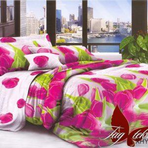 Комплект постельного белья XHY647  ПОСТЕЛЬНОЕ БЕЛЬЕ ТМ TAG > 2-спальные > Поликоттон 3D