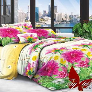 Комплект постельного белья XHY717  ПОСТЕЛЬНОЕ БЕЛЬЕ ТМ TAG > 2-спальные > Поликоттон 3D