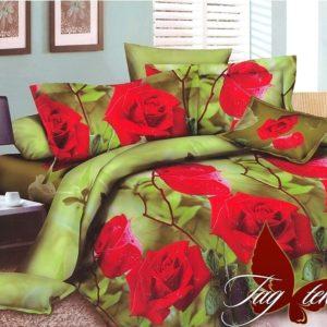 Комплект постельного белья XHYB8  ПОСТЕЛЬНОЕ БЕЛЬЕ ТМ TAG > 2-спальные > Поликоттон 3D