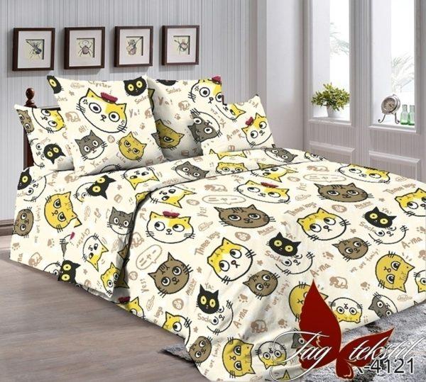 Комплект постельного белья R4121  ПОСТЕЛЬНОЕ БЕЛЬЕ ТМ TAG > 2-спальные > Ренфорс