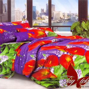 Комплект постельного белья XHY545  ПОСТЕЛЬНОЕ БЕЛЬЕ ТМ TAG > Евро > Поликоттон 3D