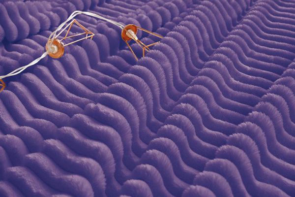 Плед велсофт (микрофибра) ALM1936 3 Постельный комплект